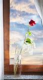 Rood nam bij het venster toe royalty-vrije stock foto's