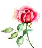 Rood nam bloem toe stock illustratie