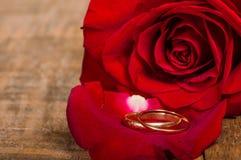 Rood nam bloemblaadje met gouden ringen toe Stock Foto's