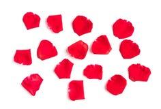 Rood nam bloemblaadjes op wit toe royalty-vrije stock foto's
