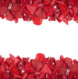 Rood nam bloemblaadjes toe Royalty-vrije Stock Foto's