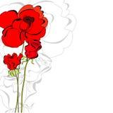 Rood nam bloemen toe Stock Fotografie