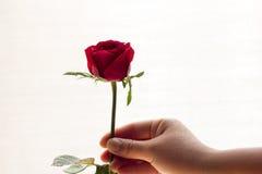 Rood nam geïsoleerd wit, in de donkere tijd van liefde, exemplaarruimte toe Stock Afbeelding