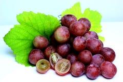 Rood nam geïsoleerde druiven toe Stock Foto's