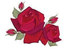 Rood nam geïsoleerde op wit toe stock illustratie