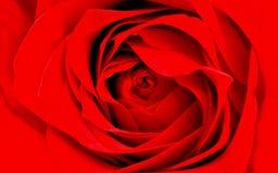 Rood nam gedetailleerd behang als achtergrond toe royalty-vrije stock fotografie