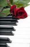 Rood nam leugens op de piano toe Royalty-vrije Stock Fotografie