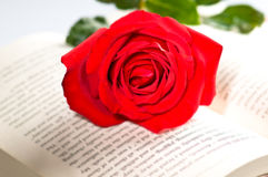 Rood nam over een boek toe Stock Fotografie