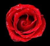 Rood nam toe Royalty-vrije Stock Afbeelding
