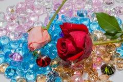 rood nam toe en het roze nam bloemen is op de kleurrijke halfedelstenen toe Stock Foto's