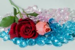 rood nam toe en het roze nam bloemen is op de kleurrijke halfedelstenen toe Royalty-vrije Stock Foto
