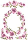 Rood nam toe Gevoelige Liefde Hand getrokken roze de pioenkaders van de waterkleur royalty-vrije stock afbeeldingen