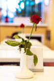 Rood nam in vaas op een lijst toe bij het restaurant Romantische avond De nadruk op Rood nam toe Royalty-vrije Stock Foto