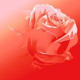 Rood nam vector - rode achtergrond toe vector illustratie