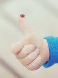 Rood onzelieveheersbeestje die zich op het uiteinde van de vinger bevinden Stock Afbeeldingen