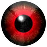 Rood oog Stock Foto