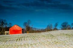 Rood op Sneeuw Royalty-vrije Stock Afbeeldingen