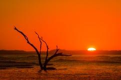 Rood-oranje het Plaatsen Zon met Silhouet bij Vloed Stock Afbeelding