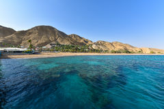 Rood overzees koraalrif in Eilat, Israël Stock Afbeeldingen