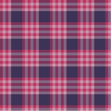 Rood plaidpatroon Stock Foto