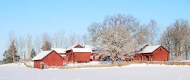 Rood plattelandshuisje Stock Fotografie