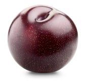 Rood pruimfruit Stock Afbeelding