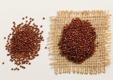 Rood Quinoa zaad Sluit omhoog van korrels over witte lijst worden uitgespreid die royalty-vrije stock fotografie