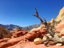Rood Rotspark in Nevada Royalty-vrije Stock Fotografie