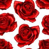Rood rozen uitstekend naadloos patroon Rood nam bloemen op achtergrond worden geïsoleerd die toe royalty-vrije illustratie