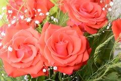 Rood rozenboeket, bloemenboeket Royalty-vrije Stock Afbeelding