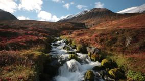 Rood Sage Waterfall stock video