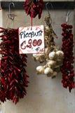 Rood Spaanse peperpeper en knoflook voor verkoop stock fotografie