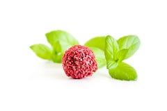 Rood suikergoed met munt Royalty-vrije Stock Foto