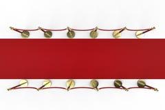 Rood tapijt met kabelbarrière Stock Fotografie