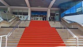 Rood tapijt op treden van het paleis van het de filmfestival van Cannes, toekenningsceremonie, bekendheid stock video