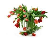 Rood tulpenboeket Royalty-vrije Stock Fotografie