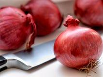 Rood uien en mes op een witte lijst Royalty-vrije Stock Afbeelding