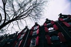 Rood venster in de winter van Amsterdam Royalty-vrije Stock Fotografie