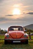 Rood Volkswagen Beetle Royalty-vrije Stock Fotografie