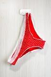 Rood vrouwelijk die ondergoed op de muur wordt gehangen Royalty-vrije Stock Foto's