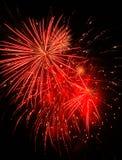 Rood Vuurwerk Stock Fotografie