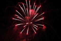 Rood Wit Exploderend Vuurwerk Stock Fotografie