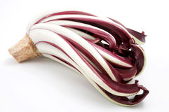 Rood witlof (intybus Cichorium) royalty-vrije stock afbeelding