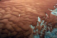 Rood zand in motie stock afbeeldingen