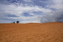 Rood zandduin in Mui Ne, Zuid-Vietnam Stock Fotografie