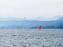 Rood zeil op het meer van Zürich Stock Foto