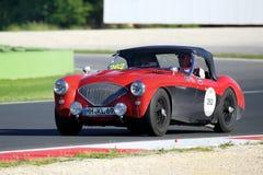 Rood/Zwart Austin Healey 100/4 BN1, 1954, drijft in Autodromo Di Vallelunga tijdens 1000 Miglia Royalty-vrije Stock Foto's