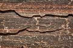 Rood & Zwart Tiger Striped Granite Royalty-vrije Stock Foto