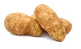 Roodbruine aardappel Royalty-vrije Stock Foto's