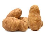 Roodbruine aardappels Stock Fotografie